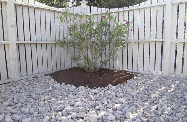 30 creative landscape supply garden soil for Gardens pool supply