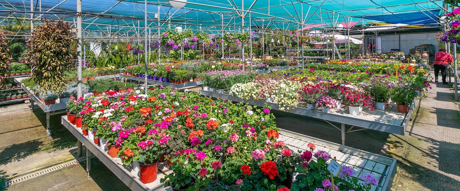 garden center variety Crete